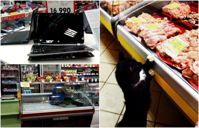 Уморительные ситуации из супермаркетов.