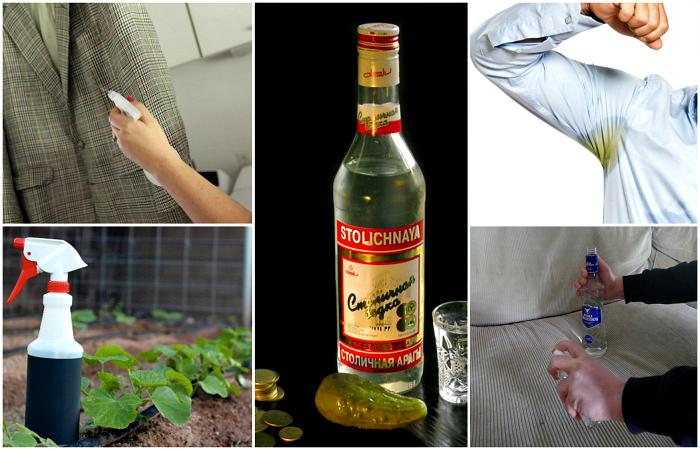 Способы альтернативного использования водки.