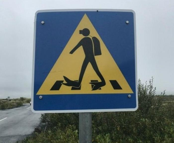 Забавный дорожный знак. | Фото: БУГАГА.