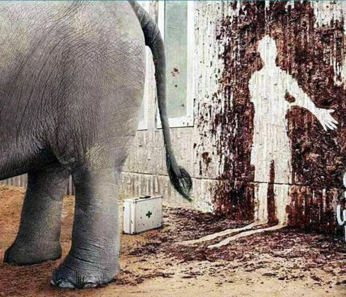 Вот у кого реально плохой день. | Фото: trendtwitter.com.