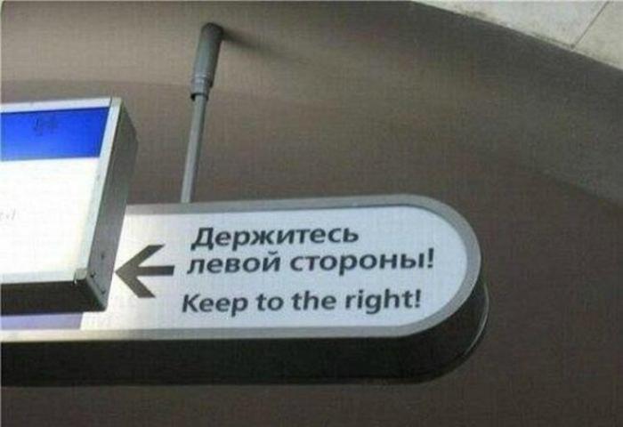 Профессиональный перевод.