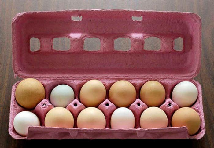Чтобы продлить срок хранения куриных яиц, смажьте их растительным маслом перед тем, как поставить в холодильник.