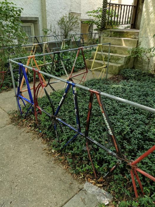 Novate.ru беспокоит только один вопрос: где они взяли столько велосипедов? | Фото: Reddit.