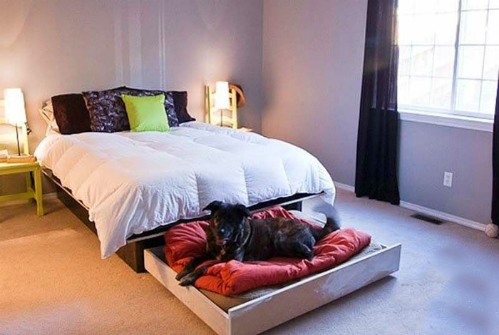 Лежанка для собаки. | Фото: Jimbarnes.