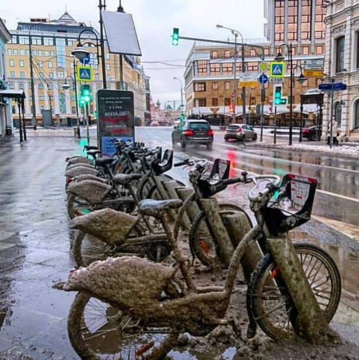 Велосипеды у дороги.