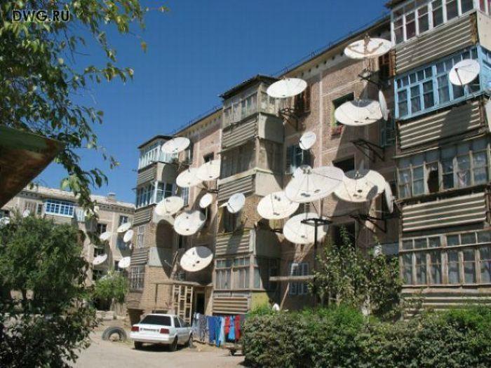 Дом фанатов кино. | Фото: fishki.net.
