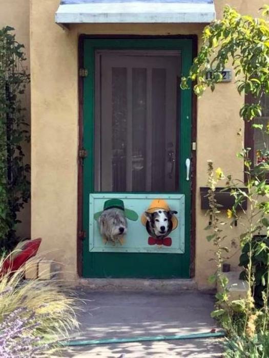 Это не собаки, это декор. | Фото: Тролльно.