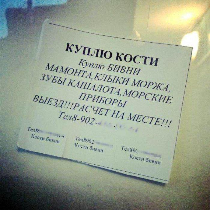 Даже на такие предметы есть свой покупатель. | Фото: copypast.ru.