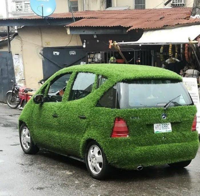 Никак авто безумного садовника! | Фото: Veetrina.