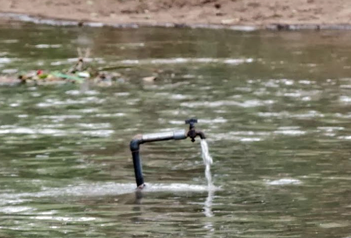 Вода к воде.