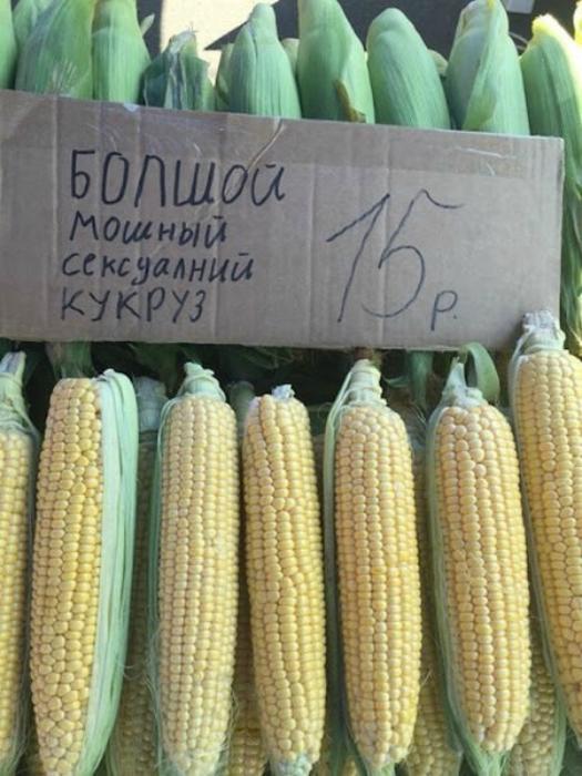 Необычная кукуруза.