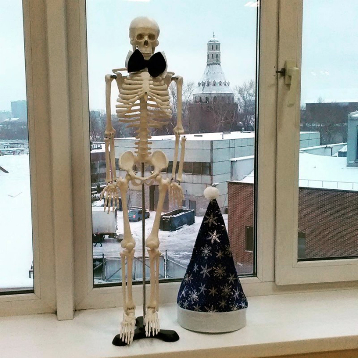 Новогодний скелет.