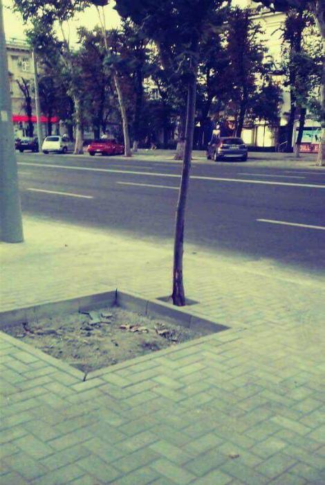 Накладочка с деревом.