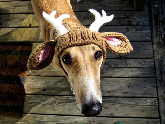 Вязаная шапка с оленьими рожками и ушками.