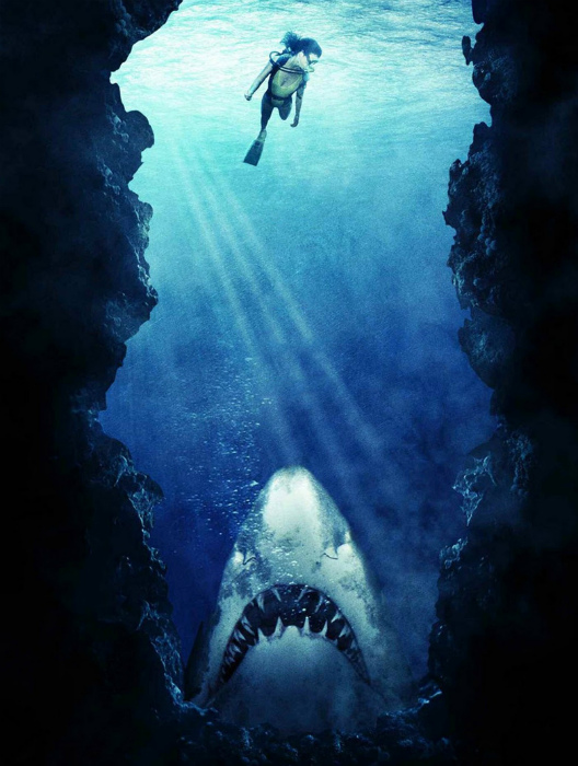 Акулы чуют кровь за версту. | Фото: teleprogramma.pro.