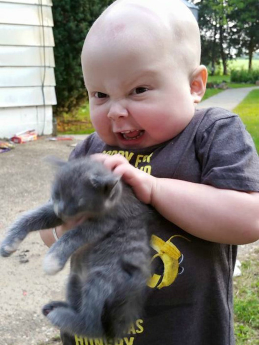 По-моему, котенок в опасности. | Фото: LeLoMBriK.