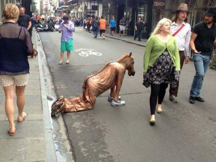 Правду говорят, остались только кони...