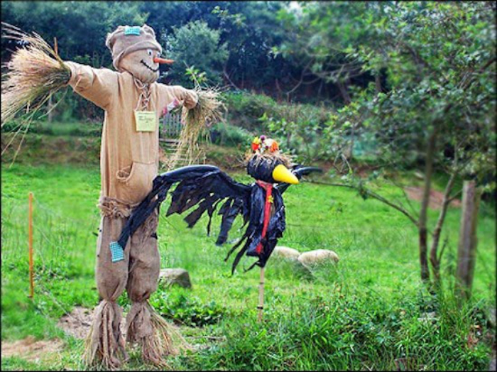 Традиционное пугало и ворона.
