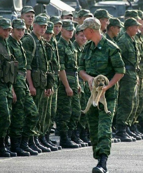 «А у меня никого нет… даже собаки! »| Фото: Kaifolog.ru.
