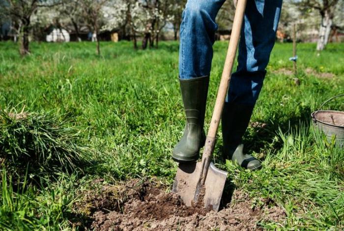 Улучшить острие лопаты.