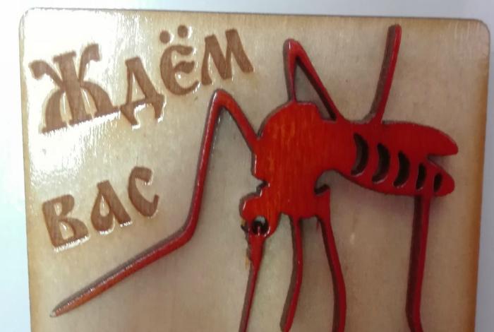 Карельские комары ждут вас! | Фото: Пикабу.