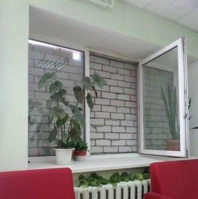 Вид из окна.