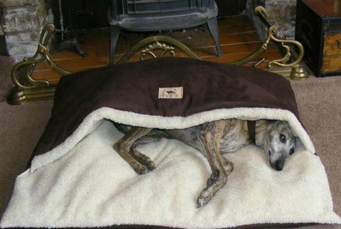 Теплая лежанка для питомца.