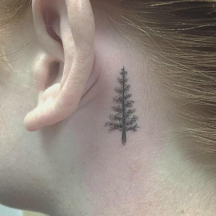 Рисунок елки.
