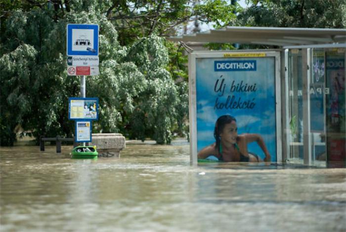 Реклама купальников.