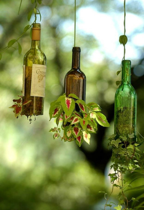 Подвесной сад в бутылках.