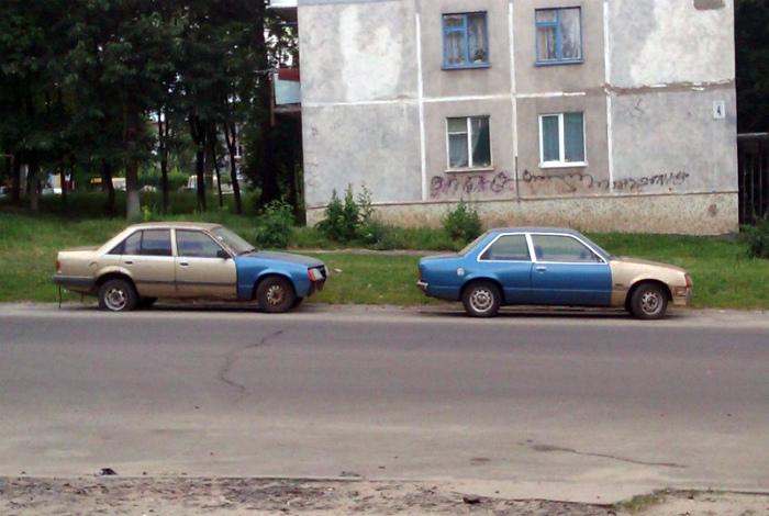 Две половинки одного целого. | Фото: RJEVSKYCOM.