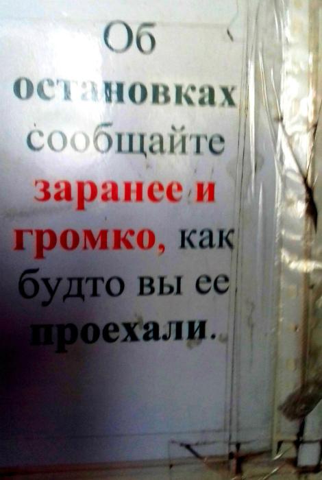 «Больше эмоции, больше!» | Фото: Новости Челябинска.