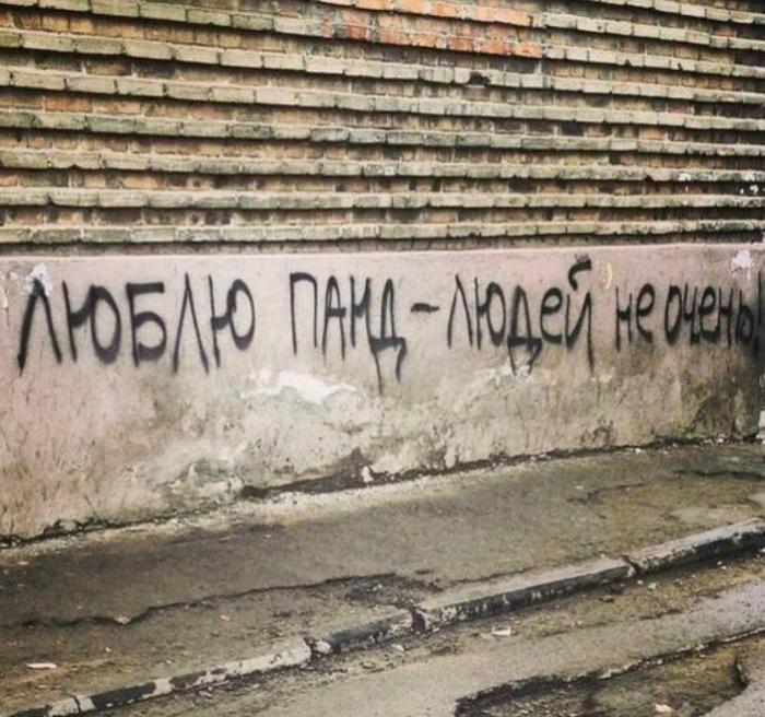 Панды классные. | Фото: Subscribe.Ru.