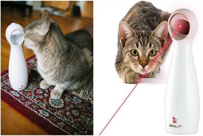 Лазерная игрушка для кота. | Фото: KittyClysm, Prom.ua.