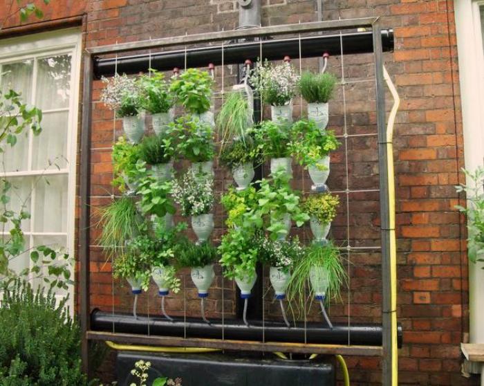 Вертикальный сад из пластиковых бутылок.