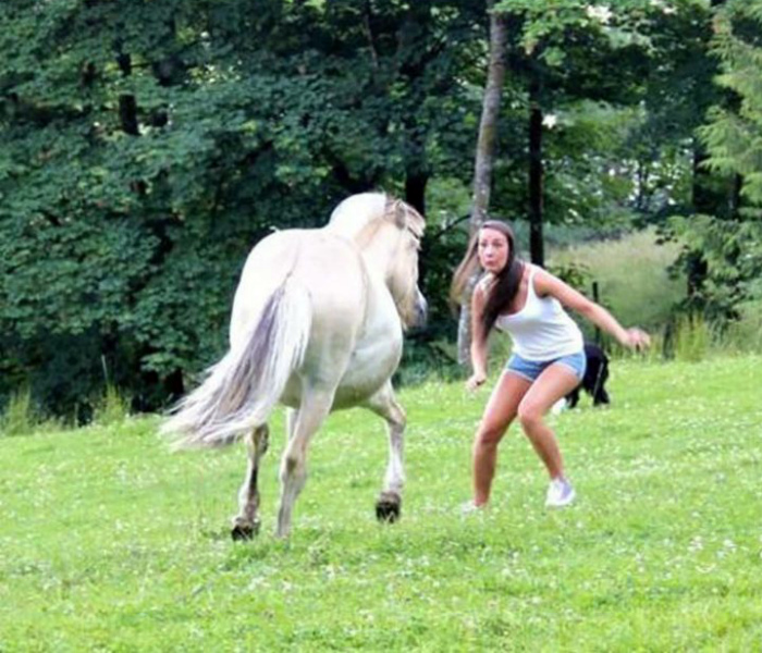 Конь психанул.