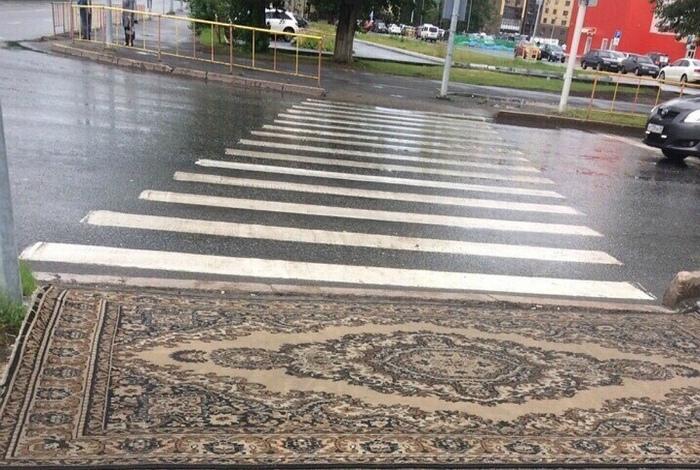 Ковровая дорожка у зебры. | Фото: telete.in.