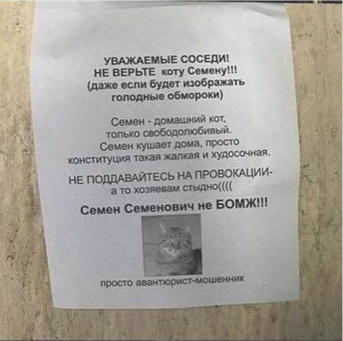 Семен не бомж, Семен мошенник!| Фото: Омутнинские Вести.