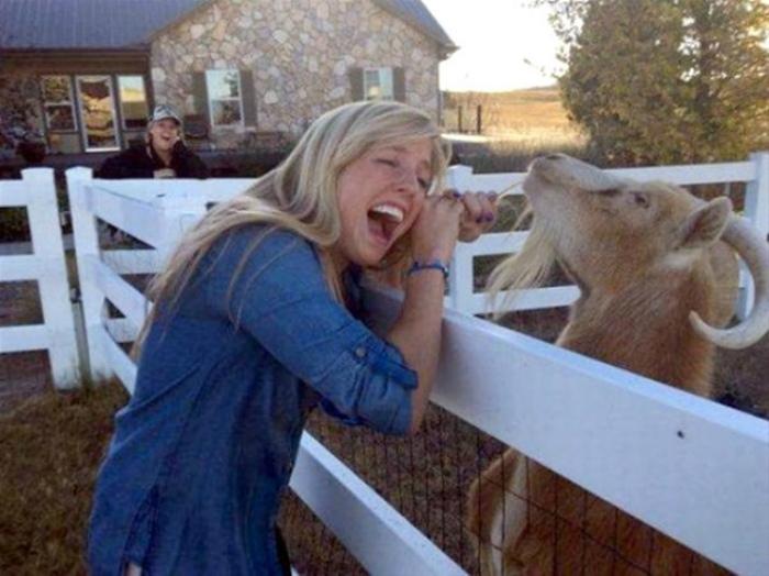 «Терпеть не могу блондинок!»