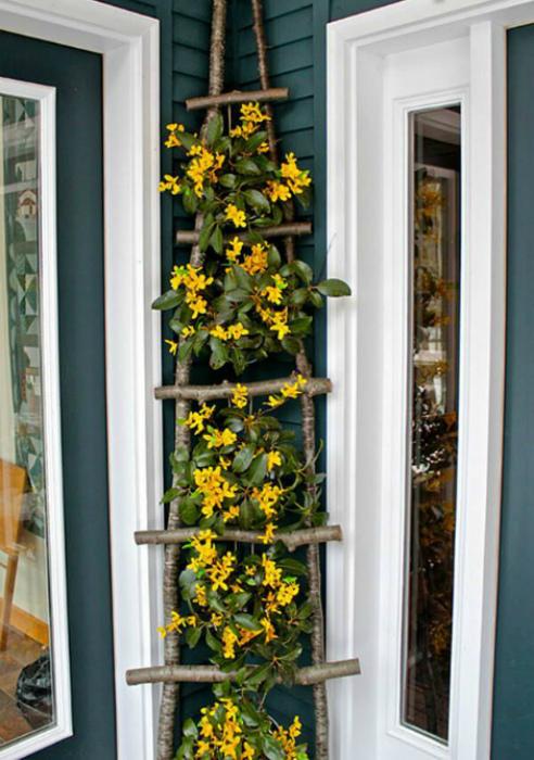 Плетистые цветы на лестницы.
