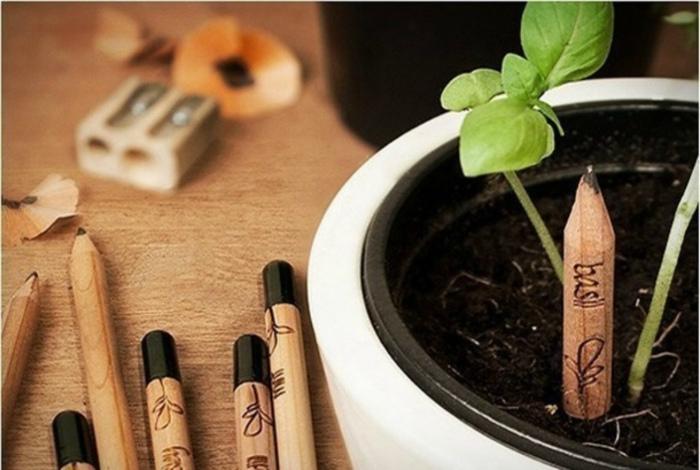 Карандаш, который можно посадить.