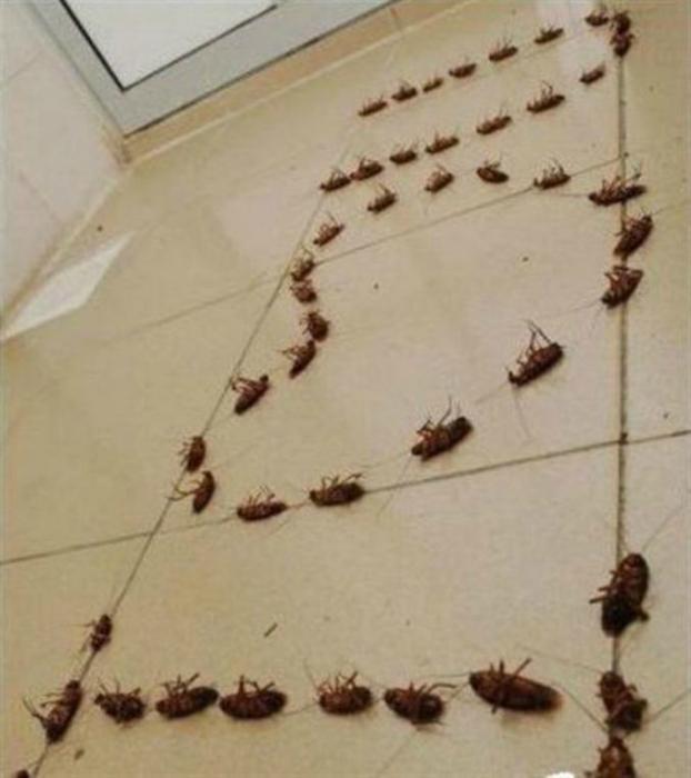 Секс сын трахает сваю маму на бане когда она моется моим шампунем 12 фотография