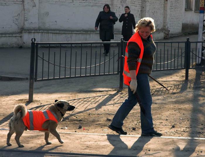 А что, никто не хочет работать у нас! | Фото: Kaifolog.ru.