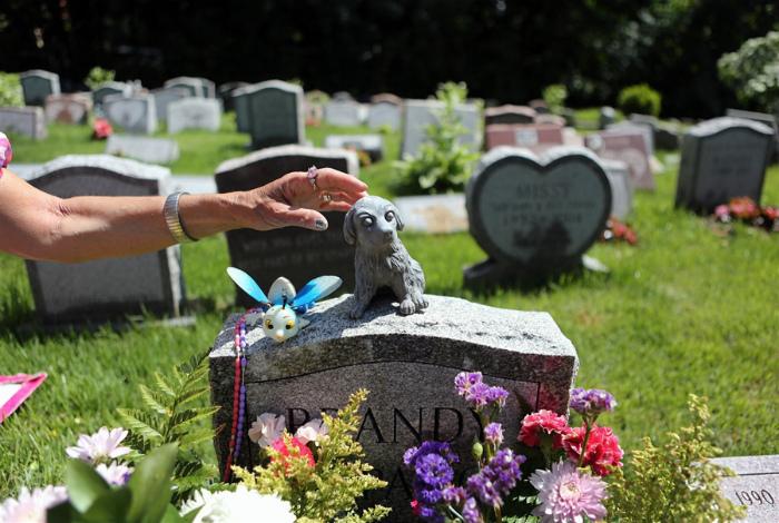 Кладбище для питомцев.