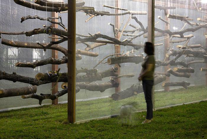 Инсталляция  в одном из парков бразильского города Белу-Оризонти, которая напоминает про разрушающее влияние человека на природу.
