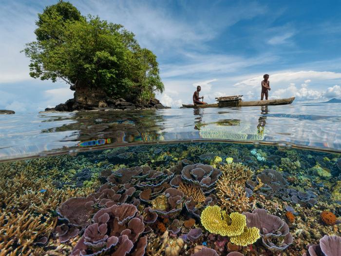 Провинция Папуа.