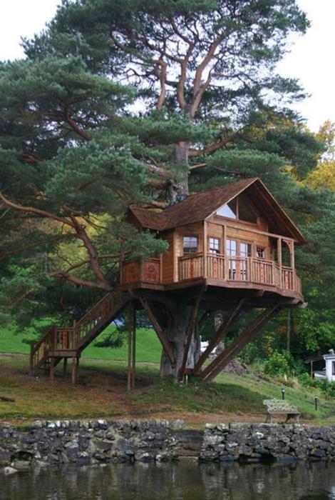 Просторный домик на дереве.