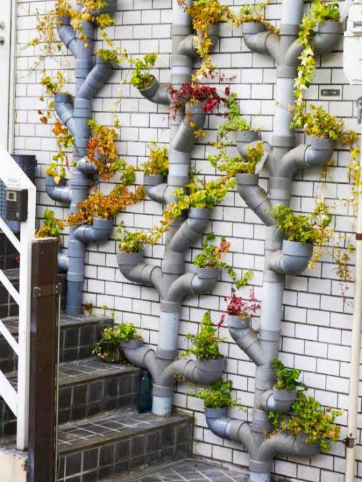Вертикальный сад у фасада.
