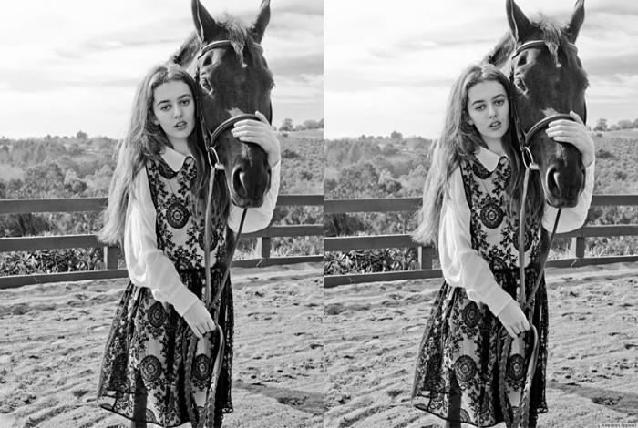 Лошадь без тела.