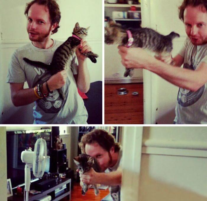 Кот-пулемет.